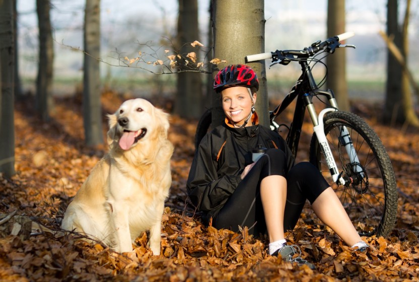 Fotolia_30451379_Subscription_Monthly_XXL_Hund