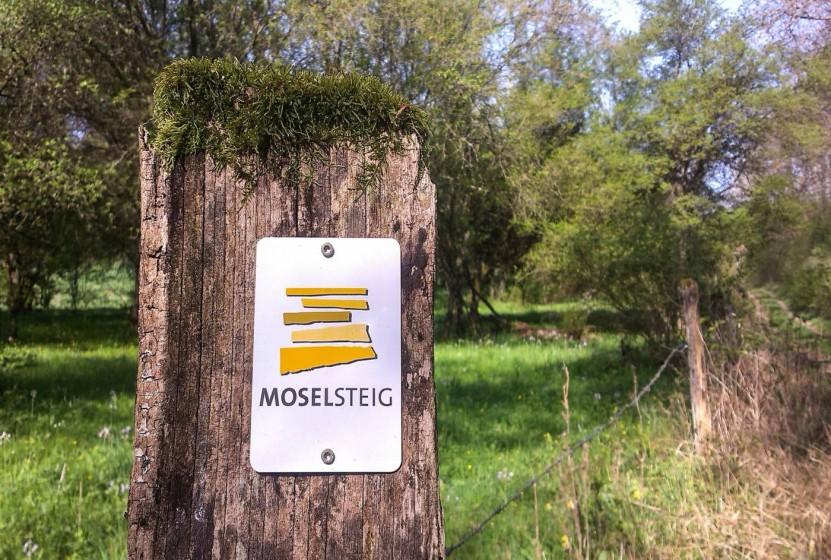 An diesen Markierungen erkennen Wanderer den Moselsteig