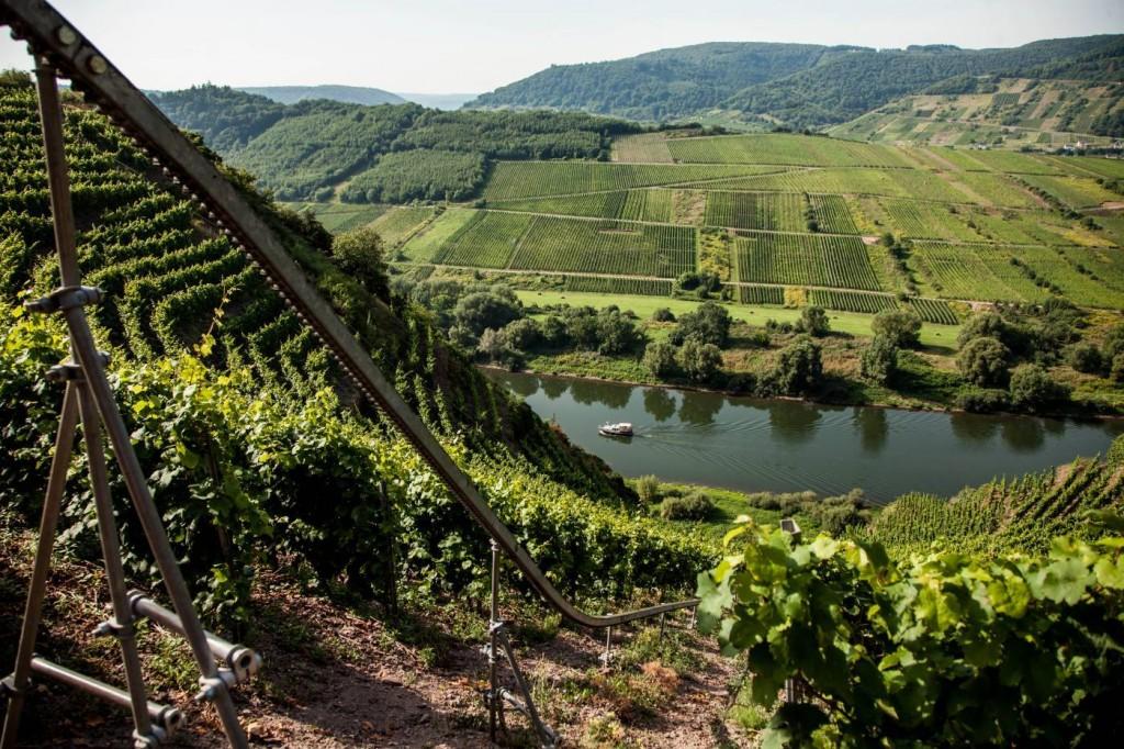 Ausgewählte Weingüter von Perl bis Koblenz