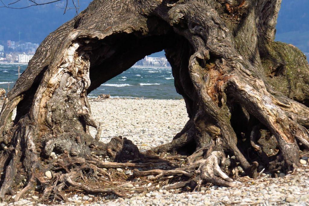 Erholung Pur Am Bodensee Besuchen Sie Eine Der Schonsten