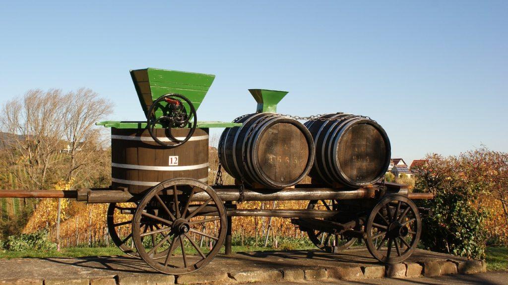 Urlaub in der Pfalz – Wandern auf dem Pfälzer Weinsteig