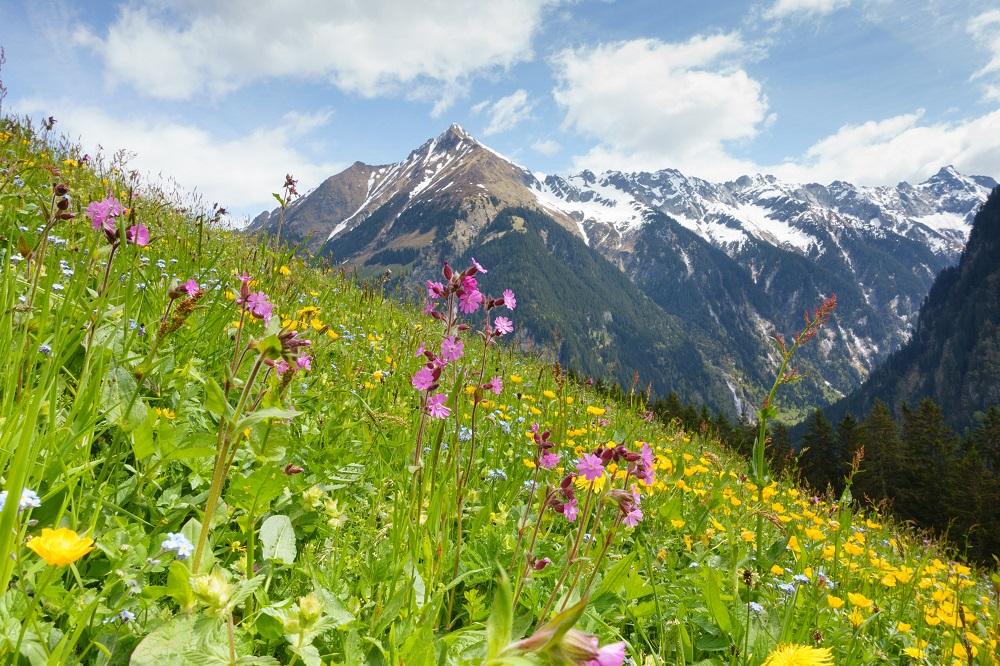 Wanderurlaub in der Steiermark – ein wahres Paradies für Naturfreunde